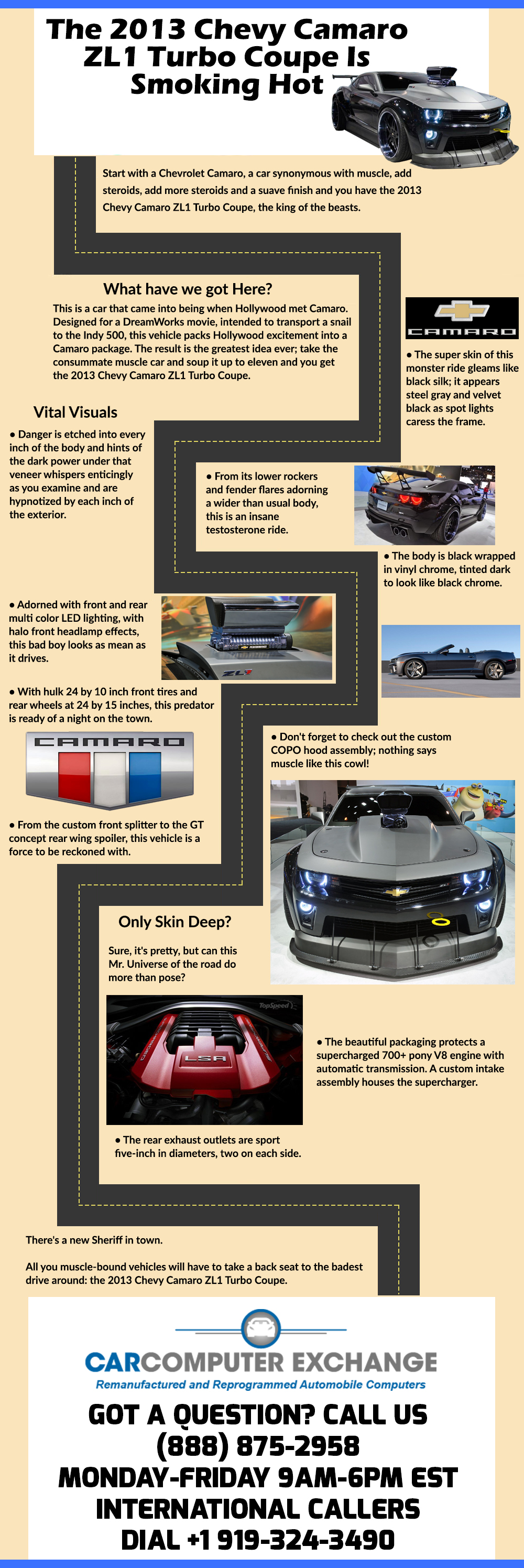 Pin On Fun Infographics