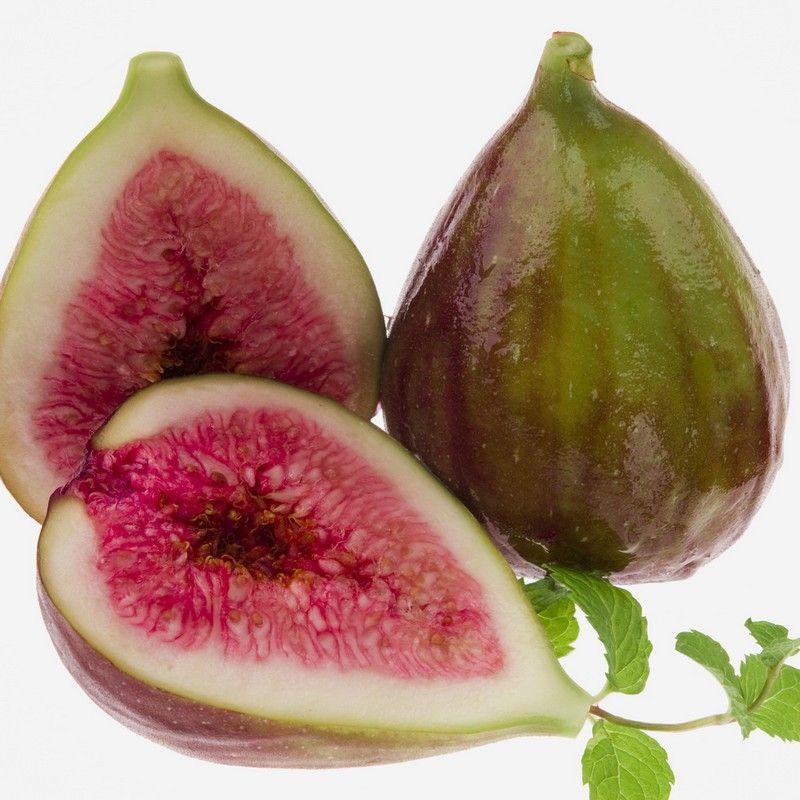Ficus carica 39 pr coce de dalmatie 39 figuier fruits verts - Figuier de barbarie comestible ...