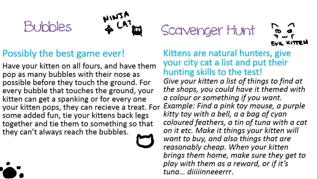 Kitten S Guide To Kitten Play Kittens Playing Kitten Cat City
