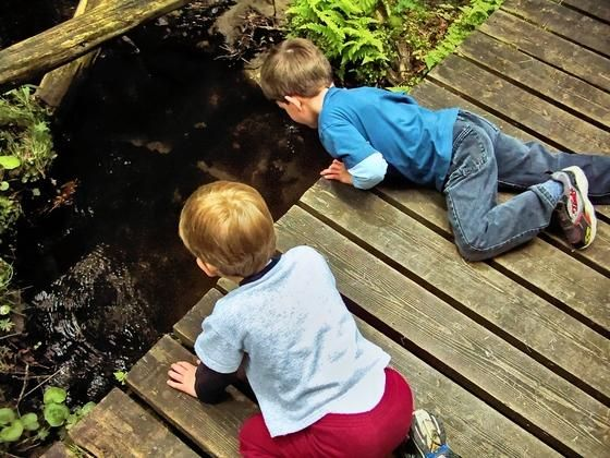 5 family-friendly nature activities to try with your kids