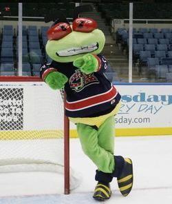 Stinger,Columbus Blue Jackets. | Hockey | Pinterest | Columbus ...