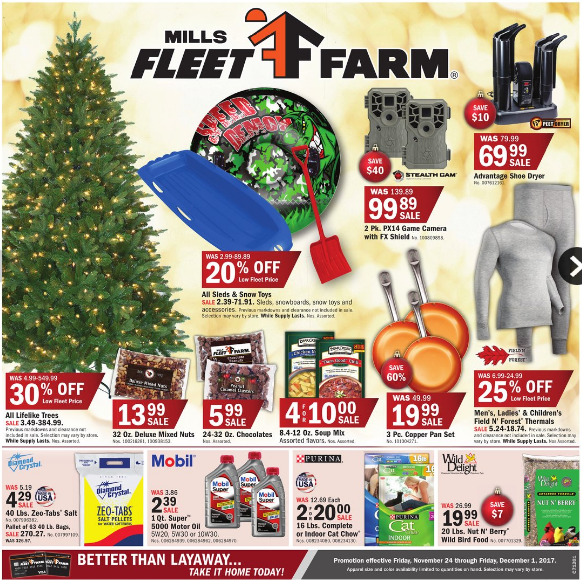 Mills fleet farm flyer