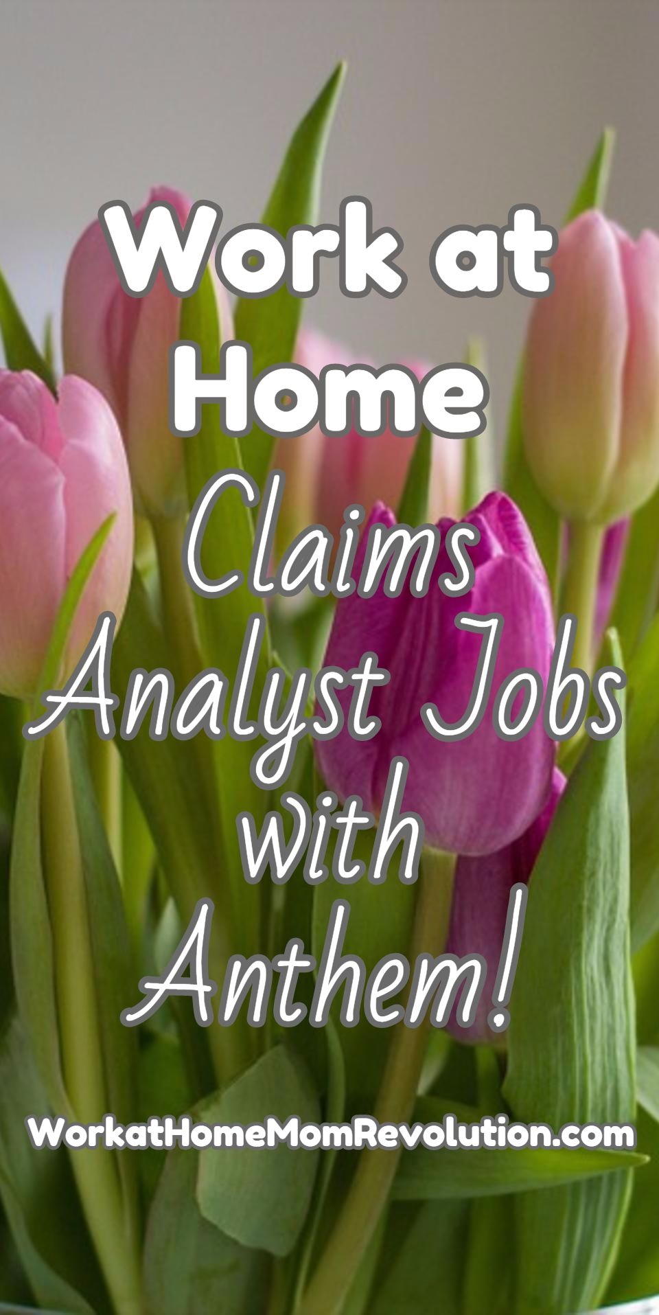 HomeBased Claims Analyst Jobs with Anthem Inc. Work