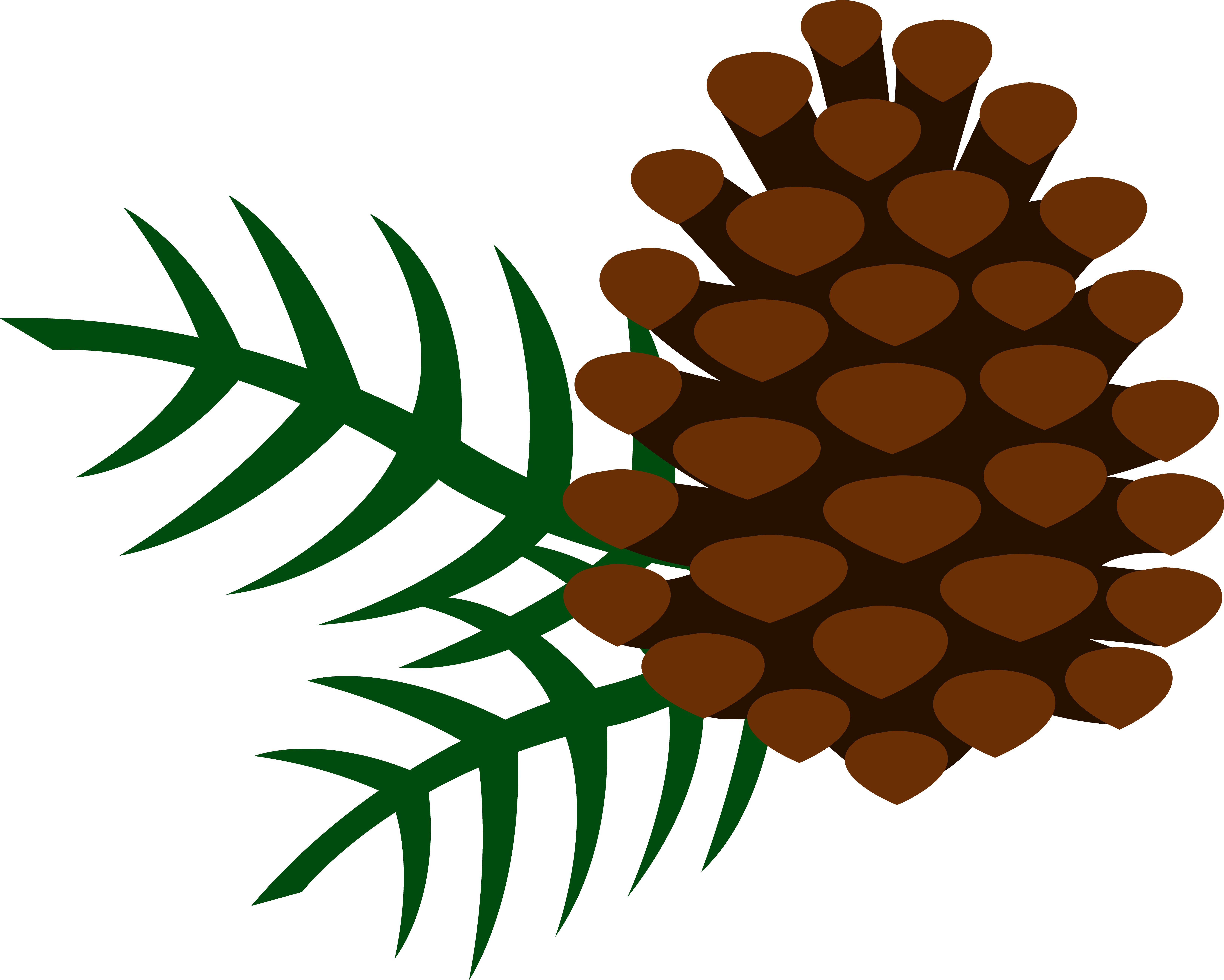 pine cones | Pine Cone and Pine Needles - Free Clip Art | Pine ...