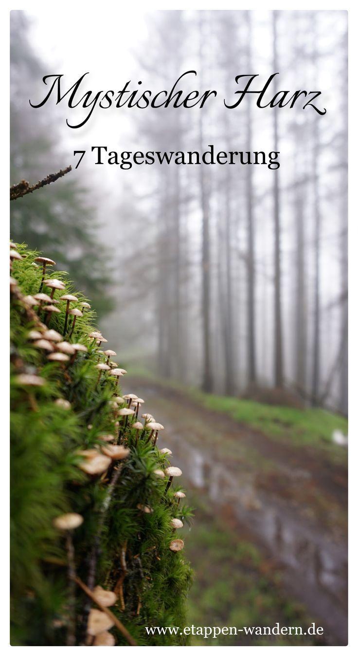 Wandern im Harz – Touren, Bilder, Stempelstellen und Eindrücke