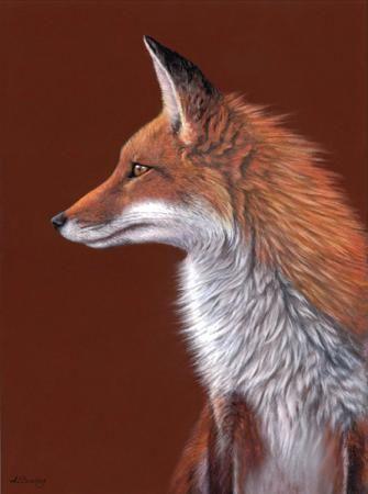 Animals, Pastels paintings & artwork, SAA, Page 12