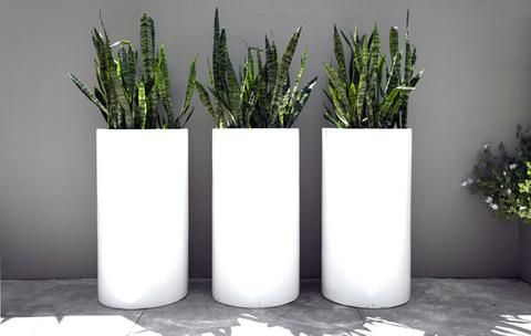 Contemporary Tall Cylinder Pot The Vignette Room White