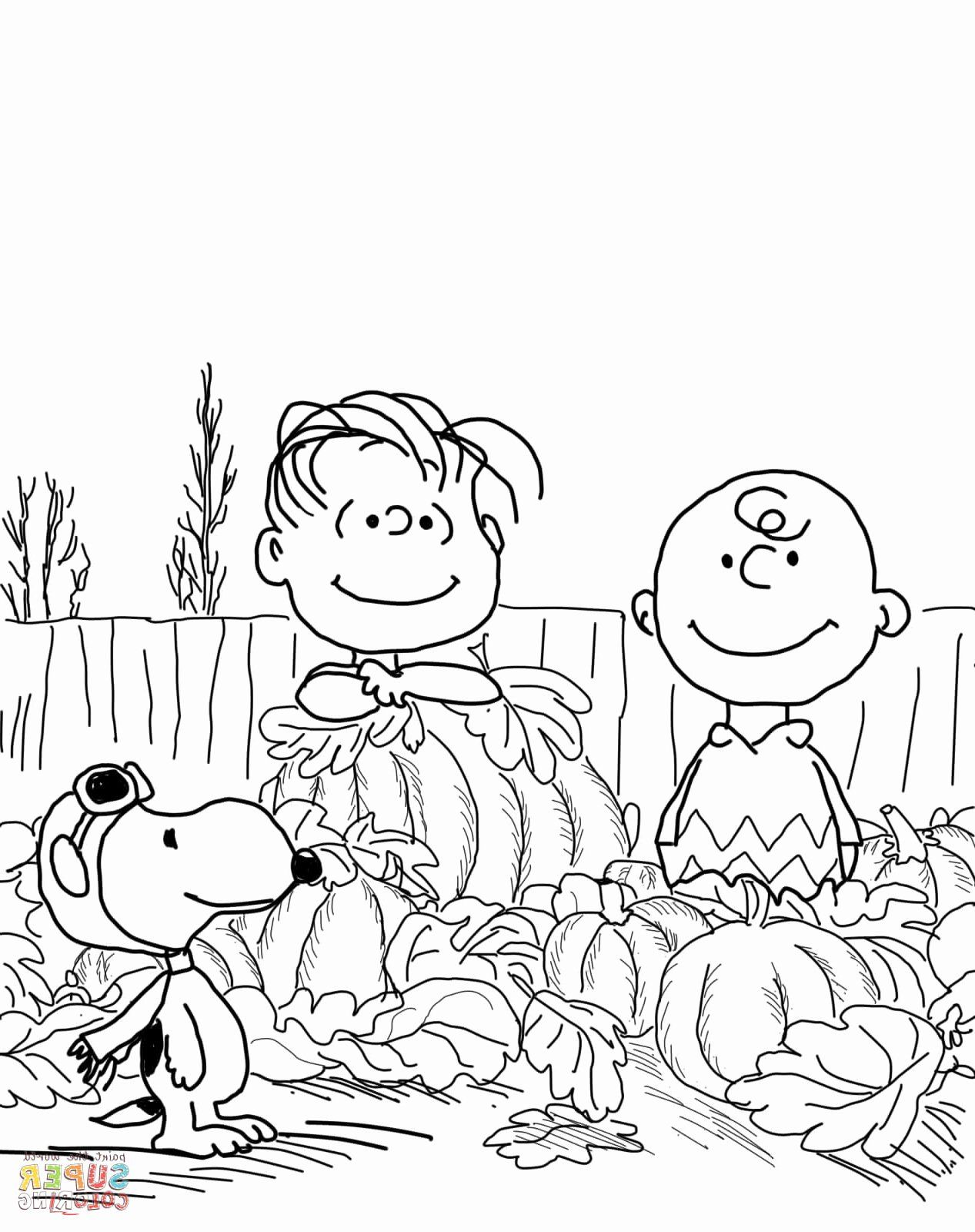 8 Pics Of Charlie Brown Valentine Coloring Pages - Charlie Brown ... | 1600x1267