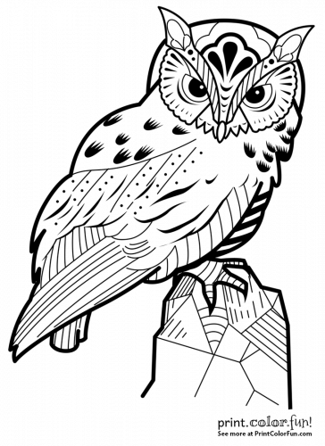 Decorative owl coloring page - Print. Color. Fun! in 2020 ...