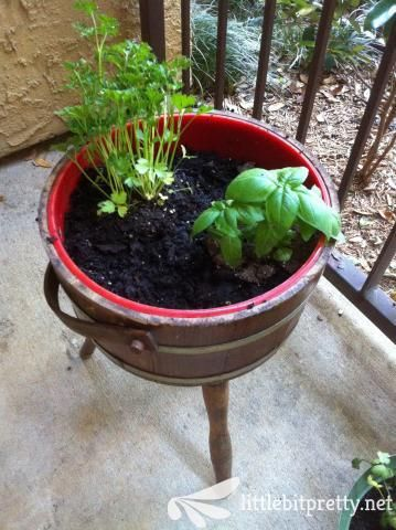 Delightful Reuse An Old School Ice Bucket As An Herb Planter. Garage Sale Find FTW