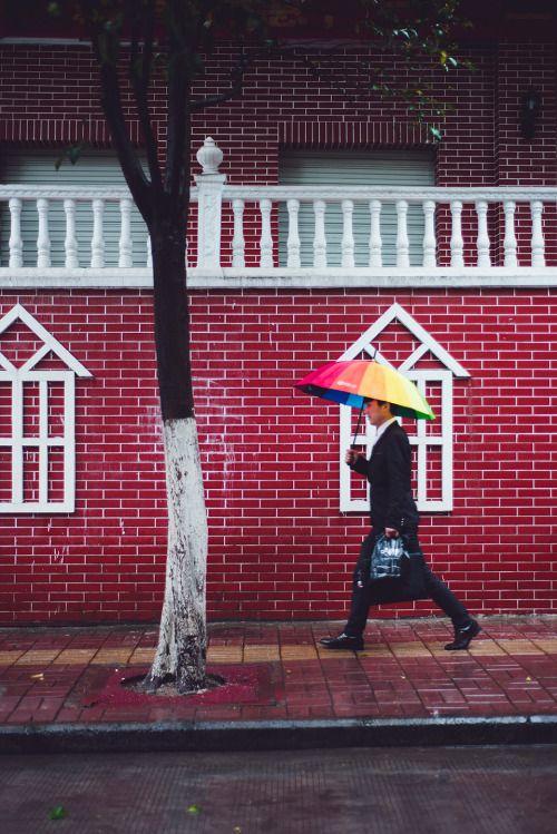 -Rainy Day 03   Photograph by Picocoon图茧