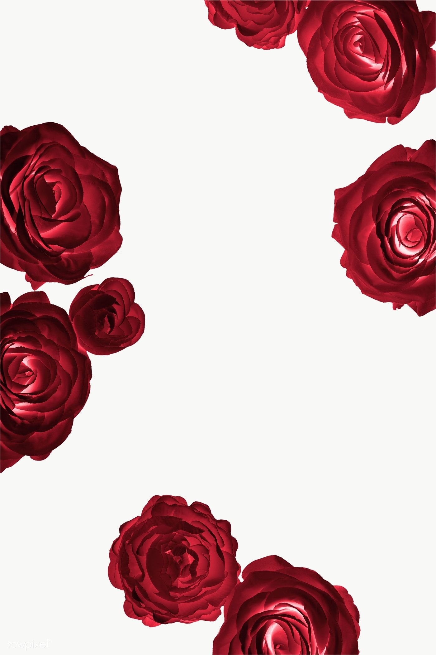 Download Premium Png Of Red Rose Pattern Transparent Png 2025434