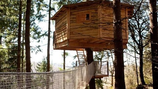 Sitios Chulos Y Aptos Para Viajar Con Los Buenoshijos Tree House Hotel Design In The Tree