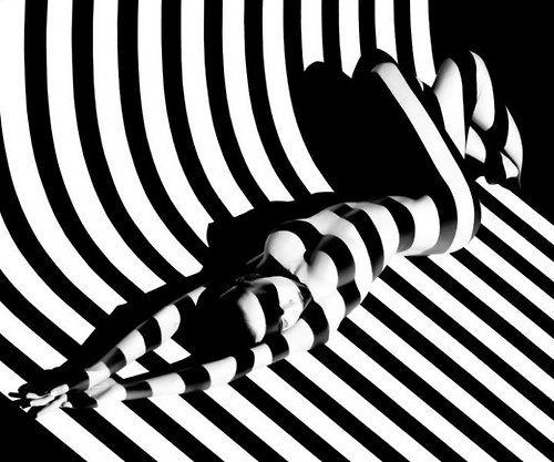 frommyfrontdoor:  (via Cultura Inquieta - Zebras)