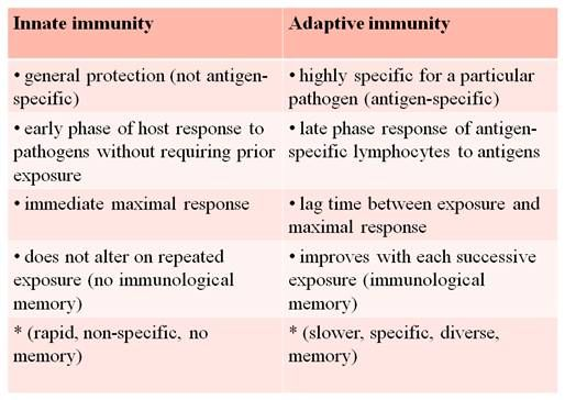 innate vs adaptive immunity | Nursing school Immunity ...