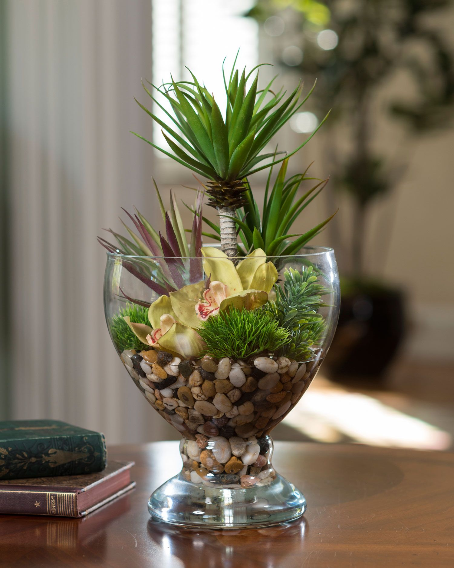 Succulent & Cymbidium Orchid