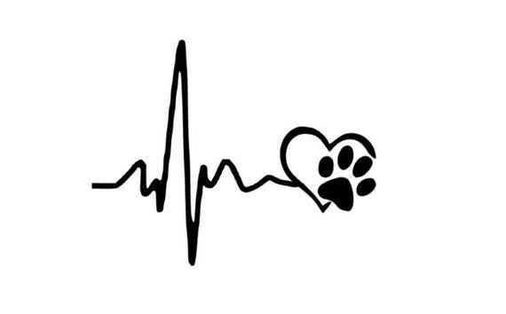 "Van Sticker Decal 8 x Paw Prints 2/"" each Car"