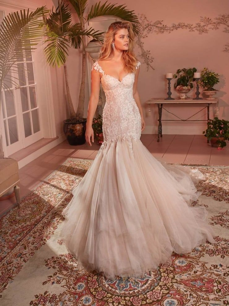 Wedding Dresses Bridal