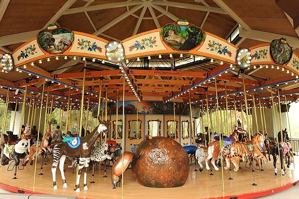 A dung beetle chariot is one of the features of the Los Angeles Zoo's