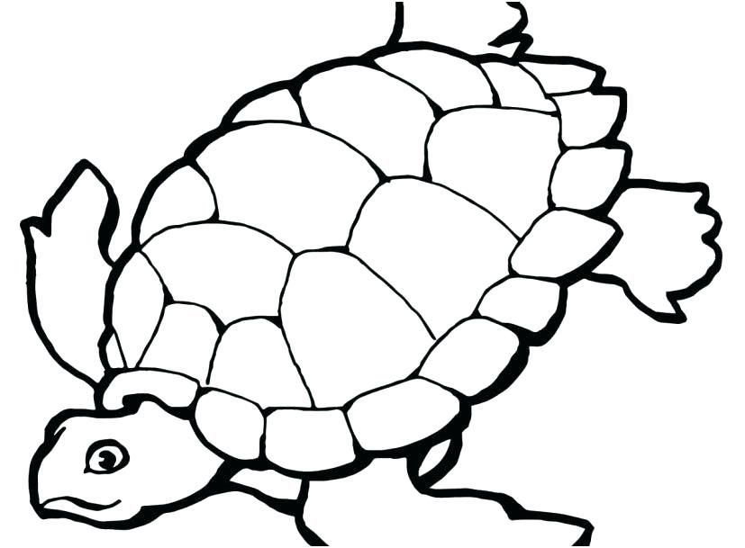 Simple Turtle Coloring Pages Ideas For Kids Turtle Coloring