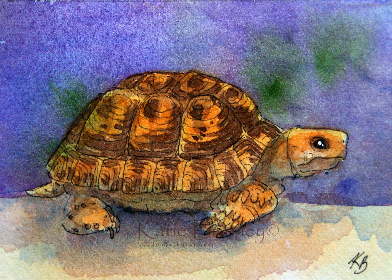 Original Aceo Painting Hermann S Or Greek Tortoise 5 Tortoise