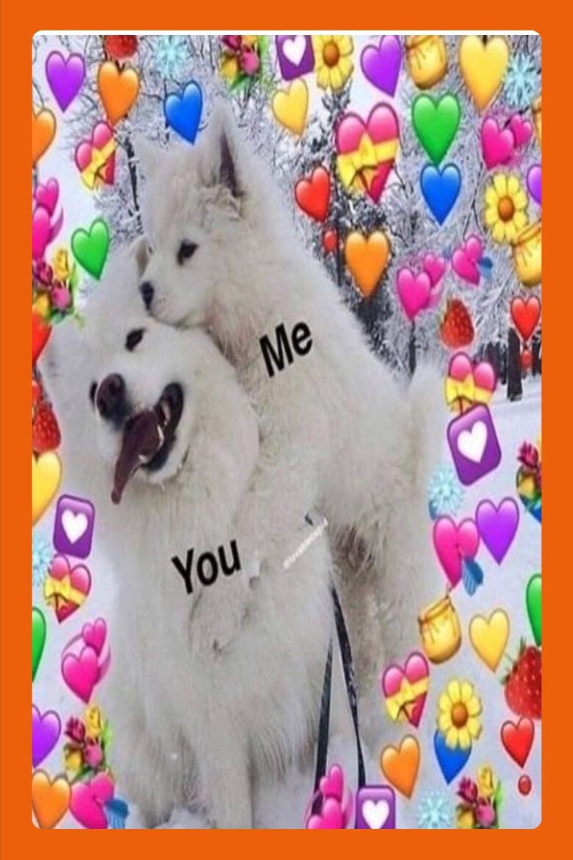 Hi I Love You Meme : You!!!!, Funny, Emoji,, Sweet, Quotes,, Memes, Quotes, Memes,