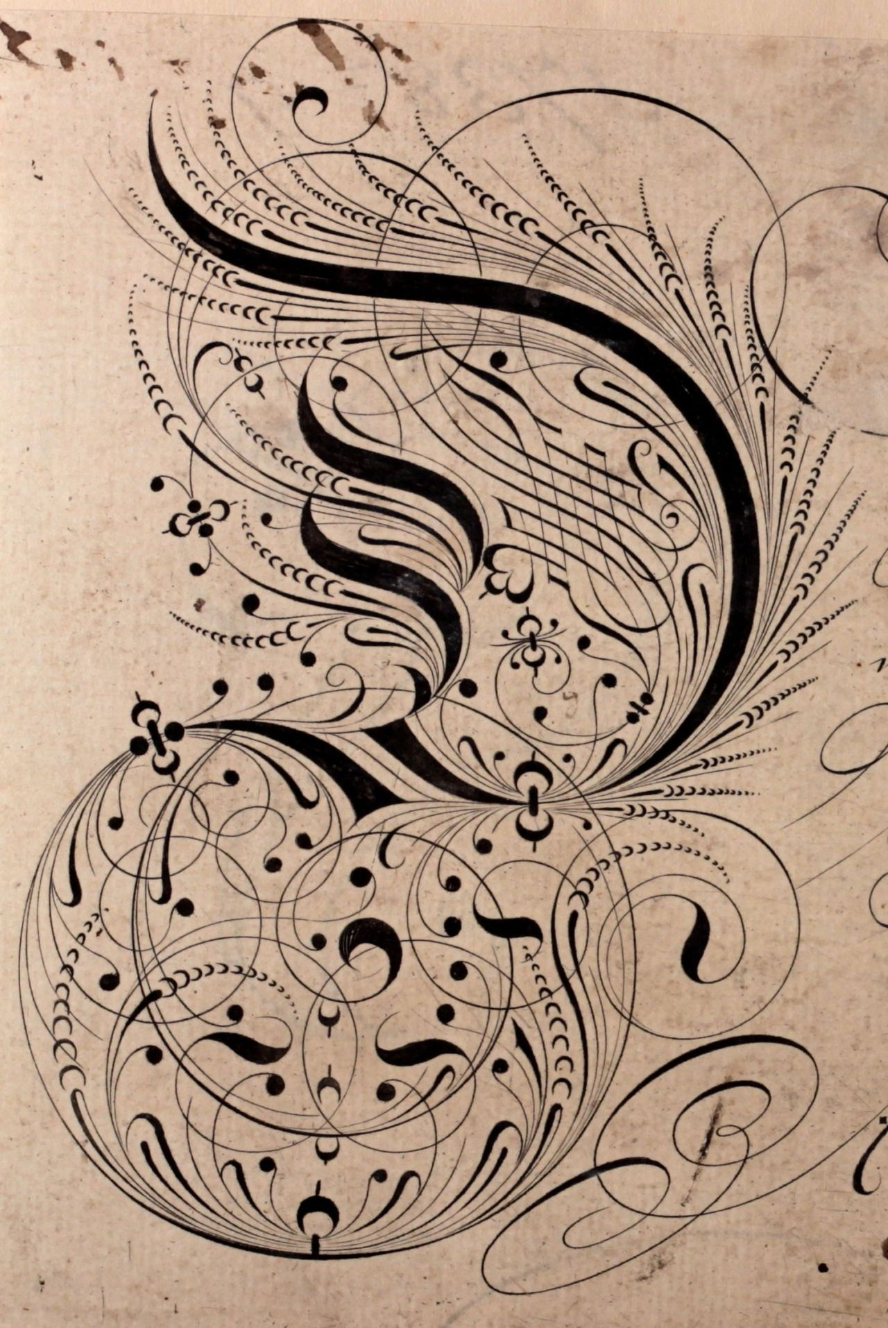 Elaborate Calligraphy By Edward Cocker Early 18th Century