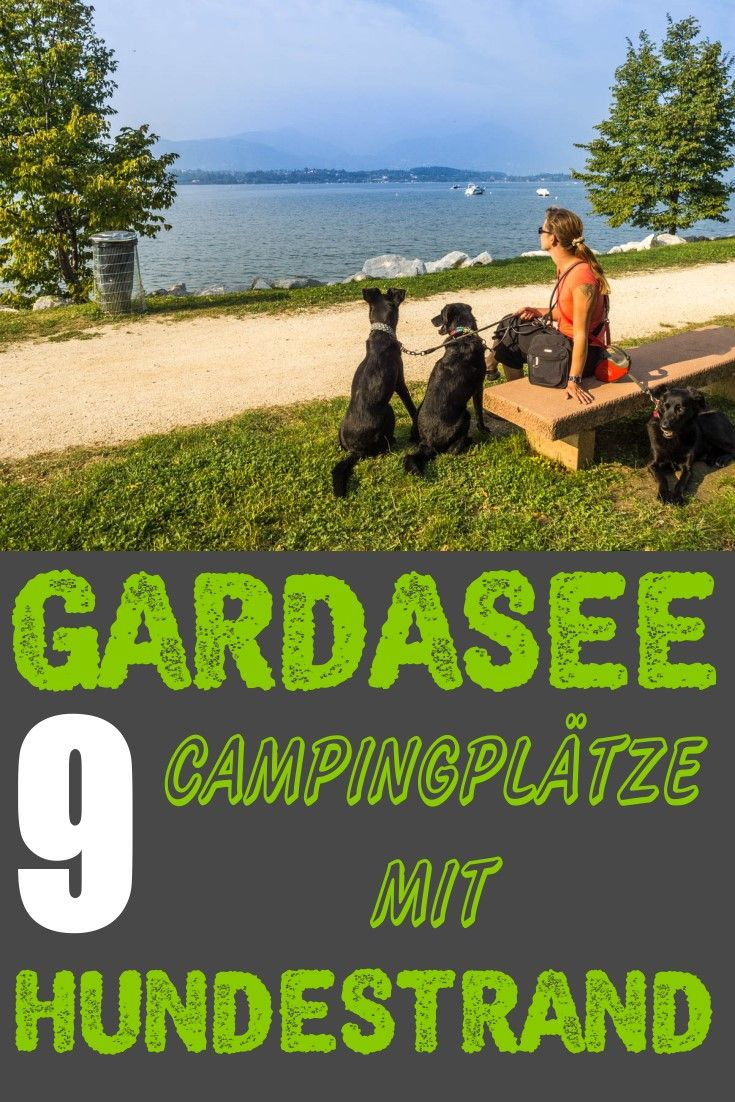 Photo of 9 campsites on Lake Garda with dog beach – Camping with dog on Lake Garda. #GA …