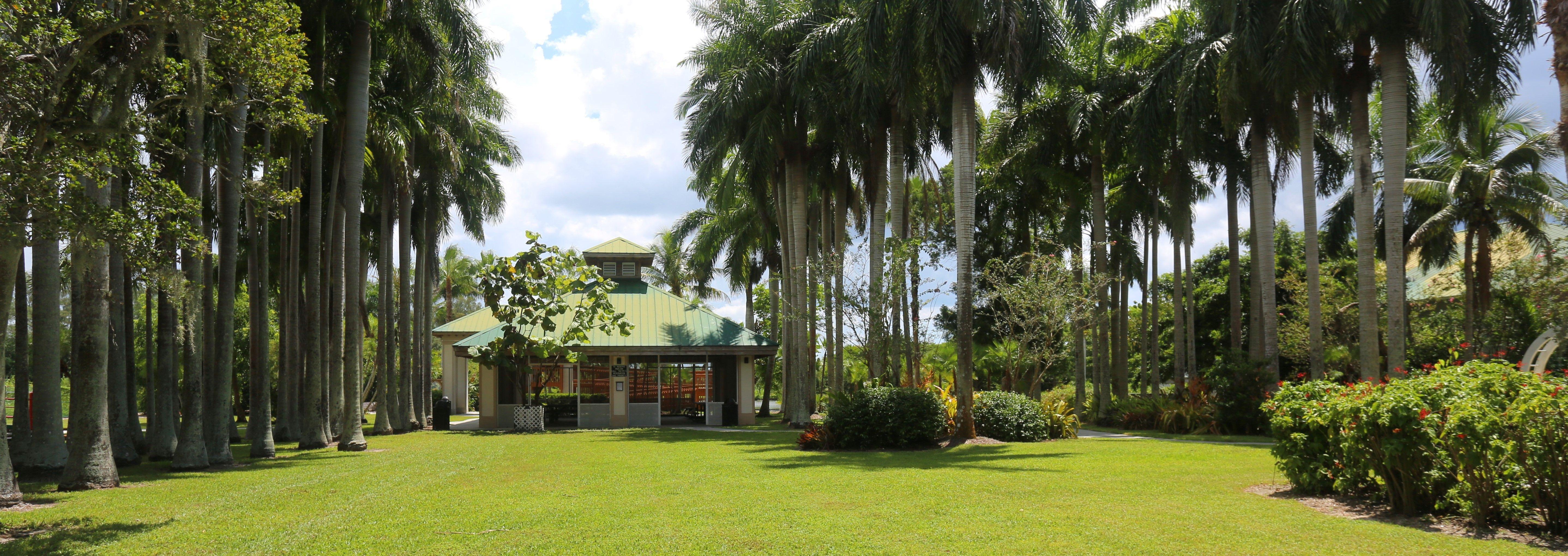 Palma Sola Botanical Park Where Florida S Beauty Remains Timeless