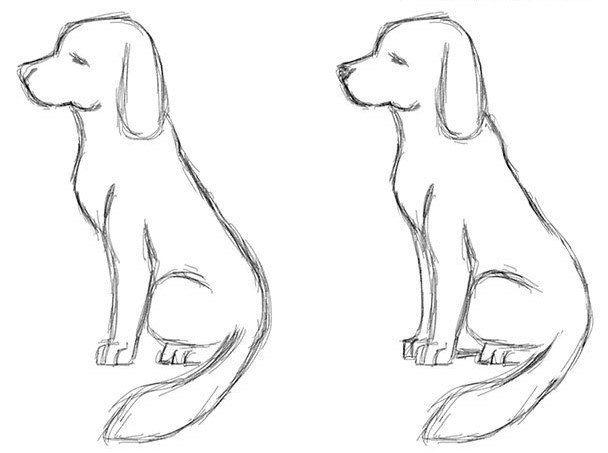 Zeichnen Malen Hier Finden Sie Viele Verschiedene Anleitungen Und Tutorials Mit Mustern Und Beschreibun Hund Einfach Zeichnen Einfach Zeichnen Hund Zeichnen
