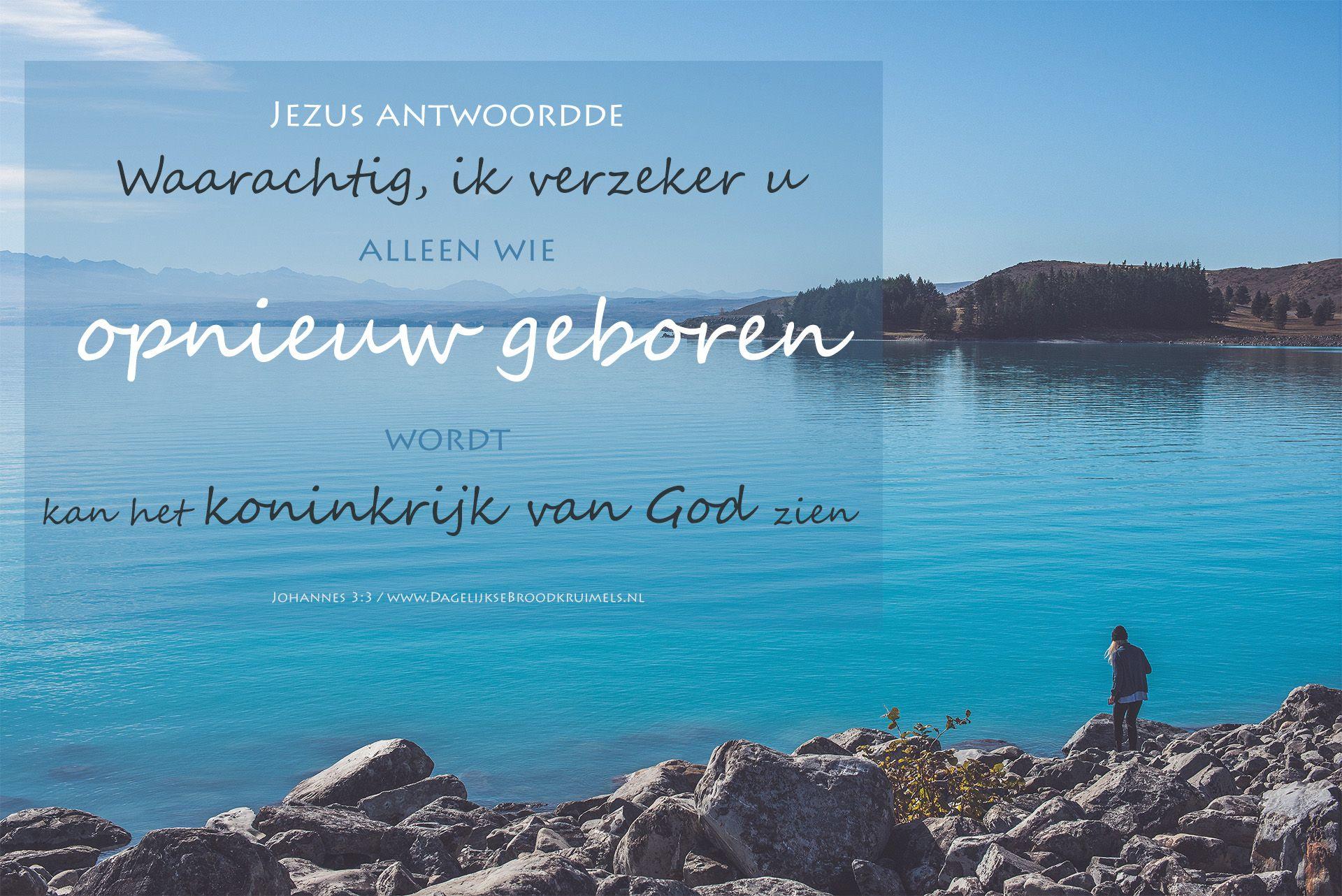 Jezus antwoordde: Waarachtig, ik verzeker u: alleen wie opnieuw geboren wordt, kan het koninkrijk van God zien.  #Koninkrijk, #Jezus  https://www.dagelijksebroodkruimels.nl/johannes-3-3/