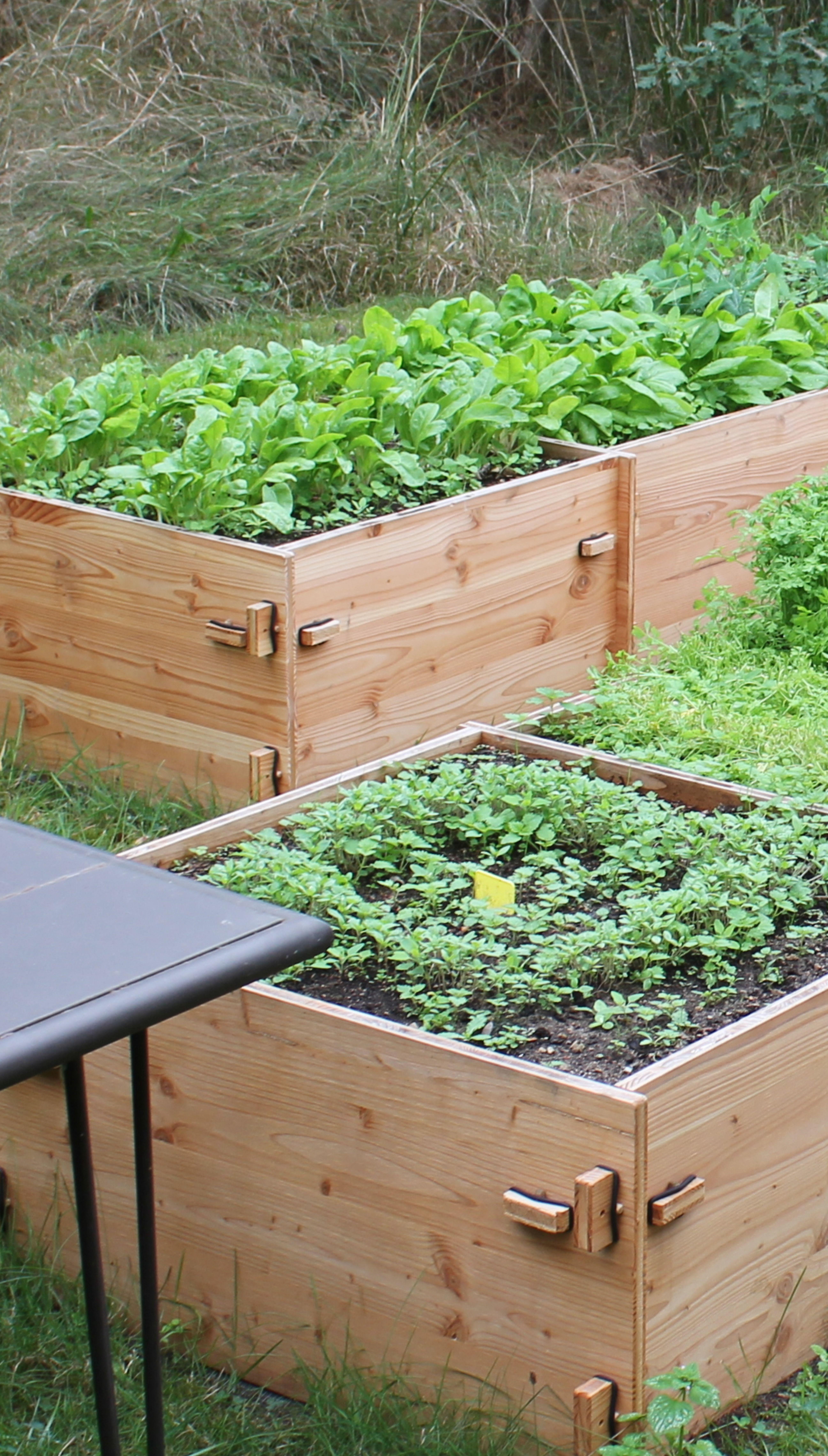 Hochbeet Stecksystem Quadrat Hochbeet Pflanzen Zierpflanzen