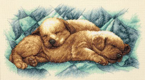 Amazon.com: Dimensions Needlecrafts Counted Cross Stitch, Peaceful Puppies: Arts, Crafts & Sewing
