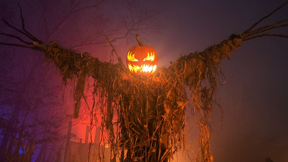 Haunted Overload scarecrow Halloween PUMPKINROTCOM What\u0027s Brewing - haunted forest ideas for halloween