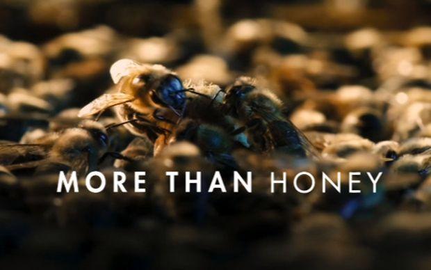 More Than Honey (Markus Imhoof, 2012) Movie Title // #film #cinema