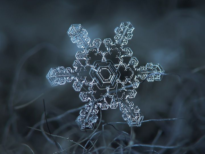 Stunning Macro Details of Uniquely Beautiful Snowflakes
