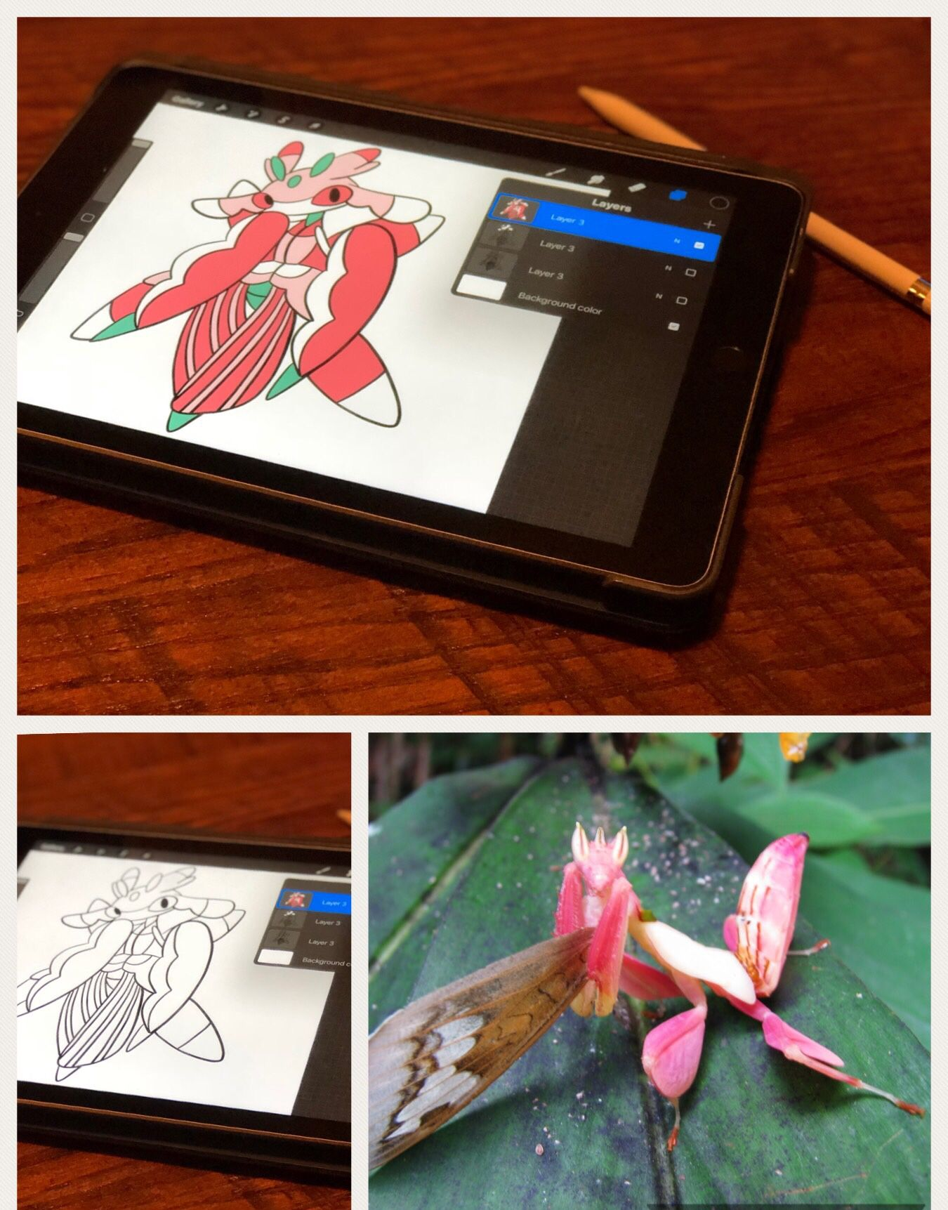 Pokemon Close Read And Worksheets Activities Orchid