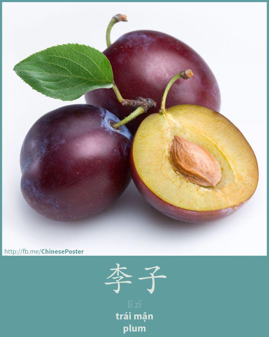 李子 - lǐ zǐ - trái mận - plum