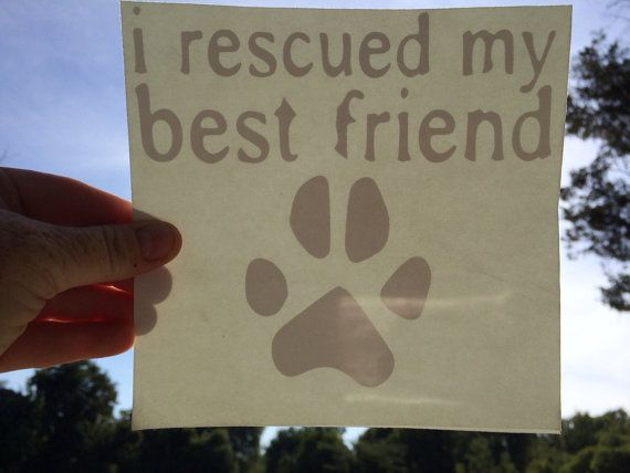 I rescued my best friend vinyl sticker 6x6 all by iAMpitbullSTRONG