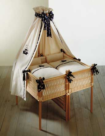 Bassinet For Twins Babies Pinterest Twins Babies And Nursery