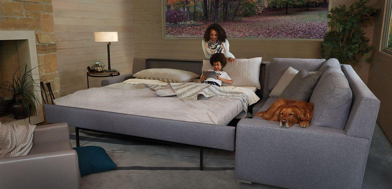 Sleeper Sofa U0026 Comfort Sleeper   American Leather