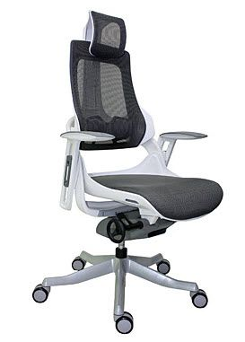Raynor Eurotech Wau Chair with Headrest Discontinued