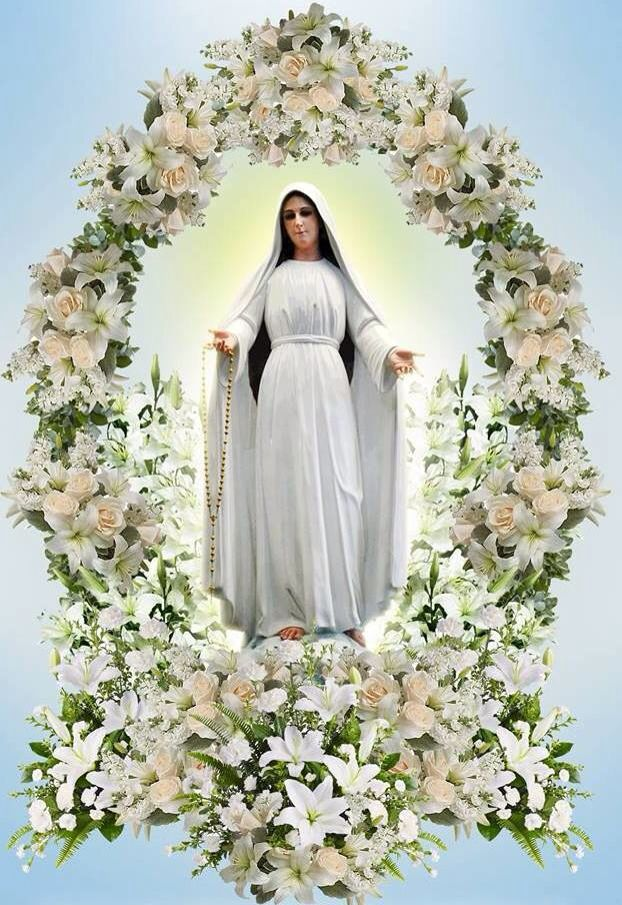 Mary Mediatrix Holy Mary Help Those In Need Give Strength To