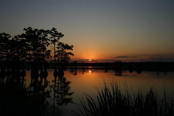 Sunset At Reelfoot Lake Union City Photo Album Topix Lake Union Union City Lake Pictures
