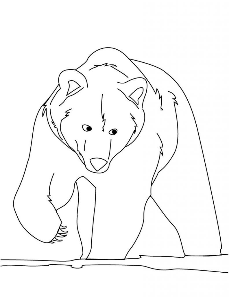Free Printable Bear Coloring Pages For Kids | Pinterest | Bears and ...