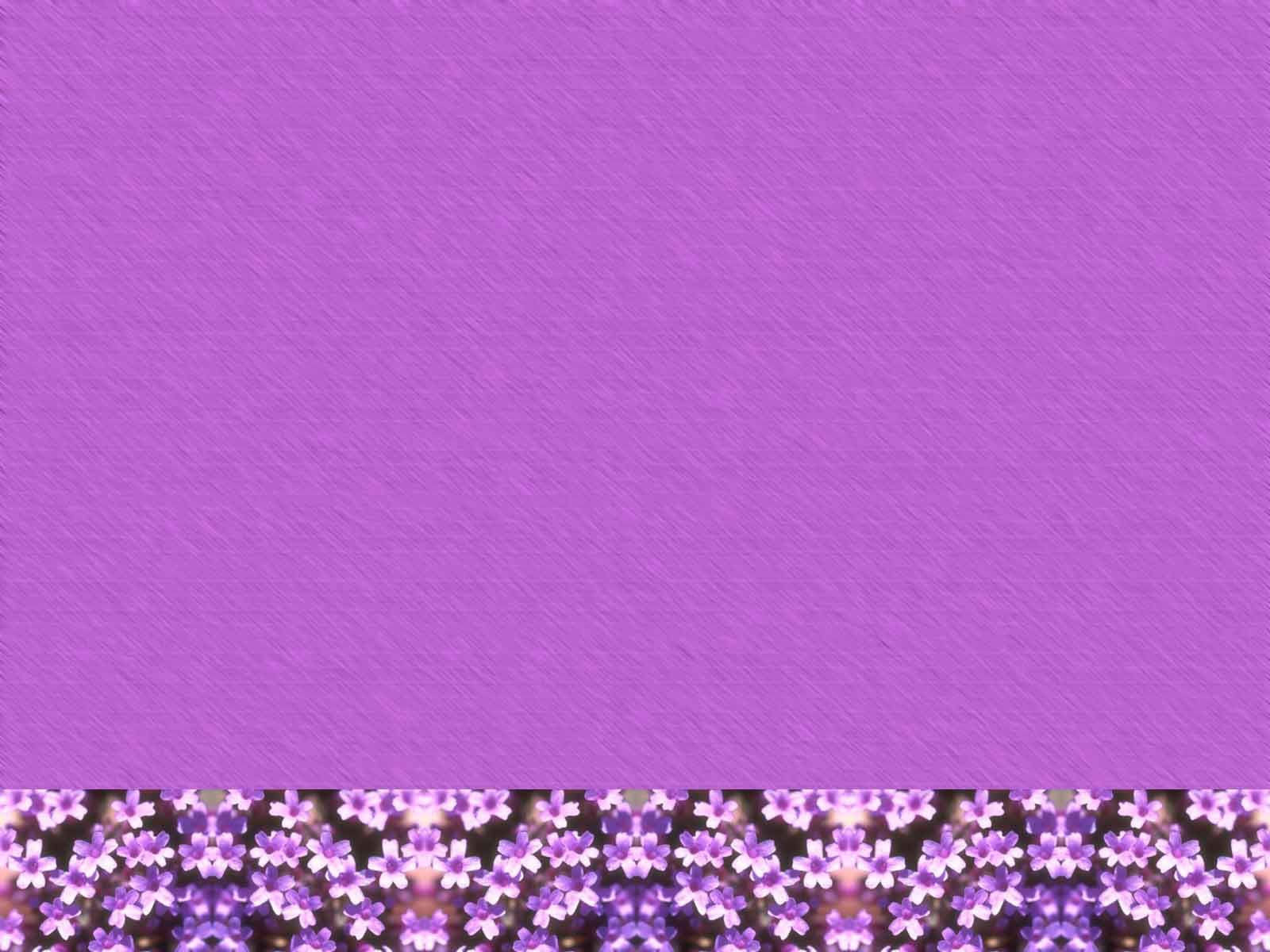 Purple Flower Backgrounds Purple Backgrounds Twinkle Stars Purple