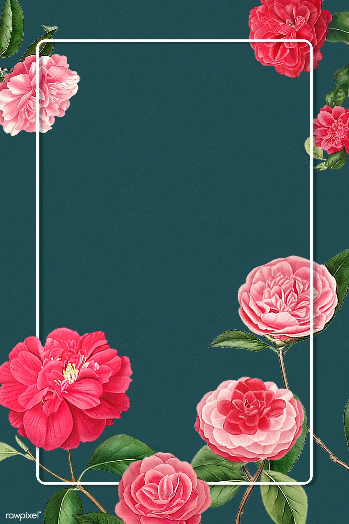 Download Premium Psd Of Red And Pink Camellia Flower Patterned Blank Frame In 2020 Flower Illustration Flower Frame Camellia Flower