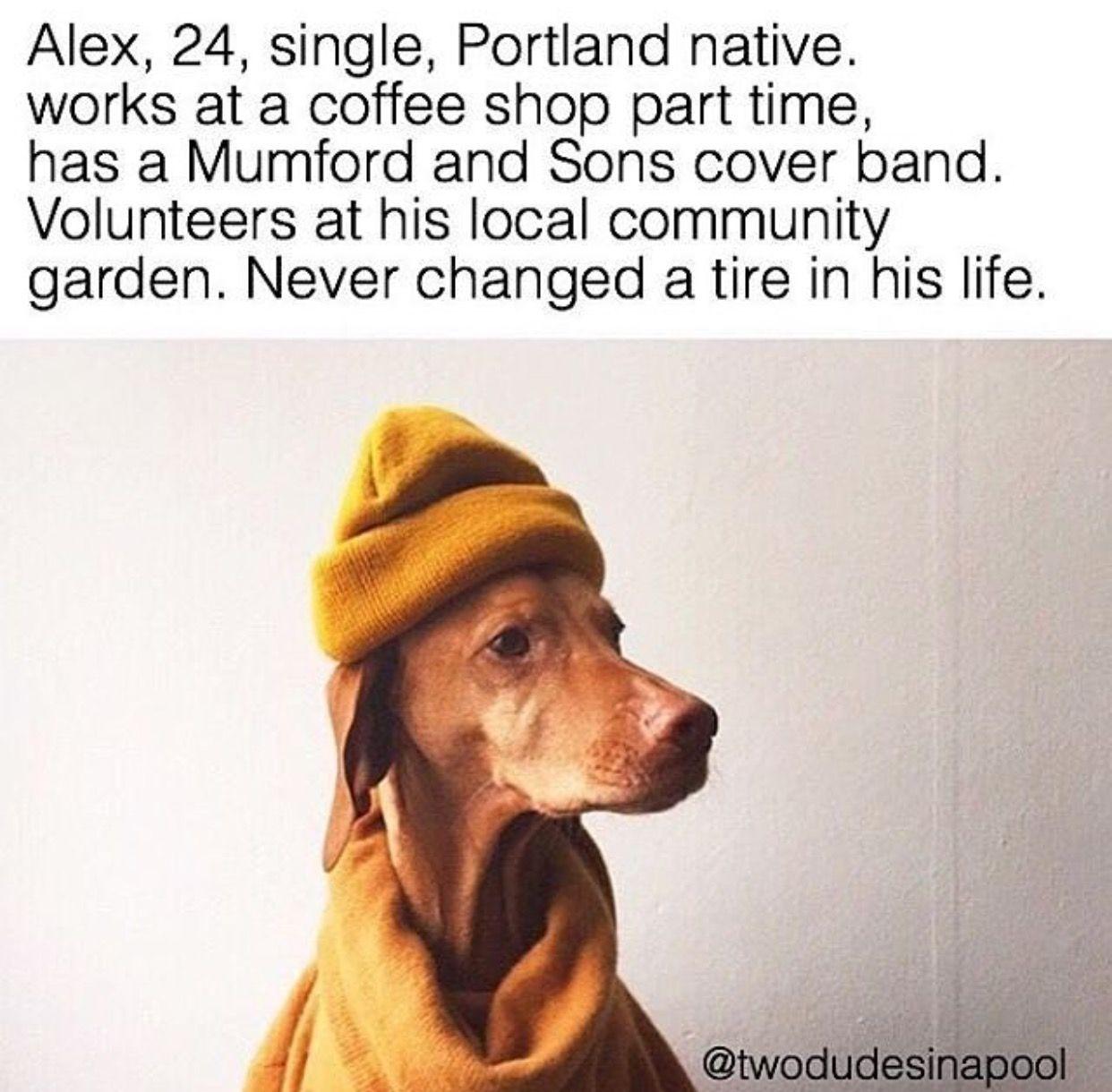 Pin by samantha chamness on lol pinterest dog animal and memes
