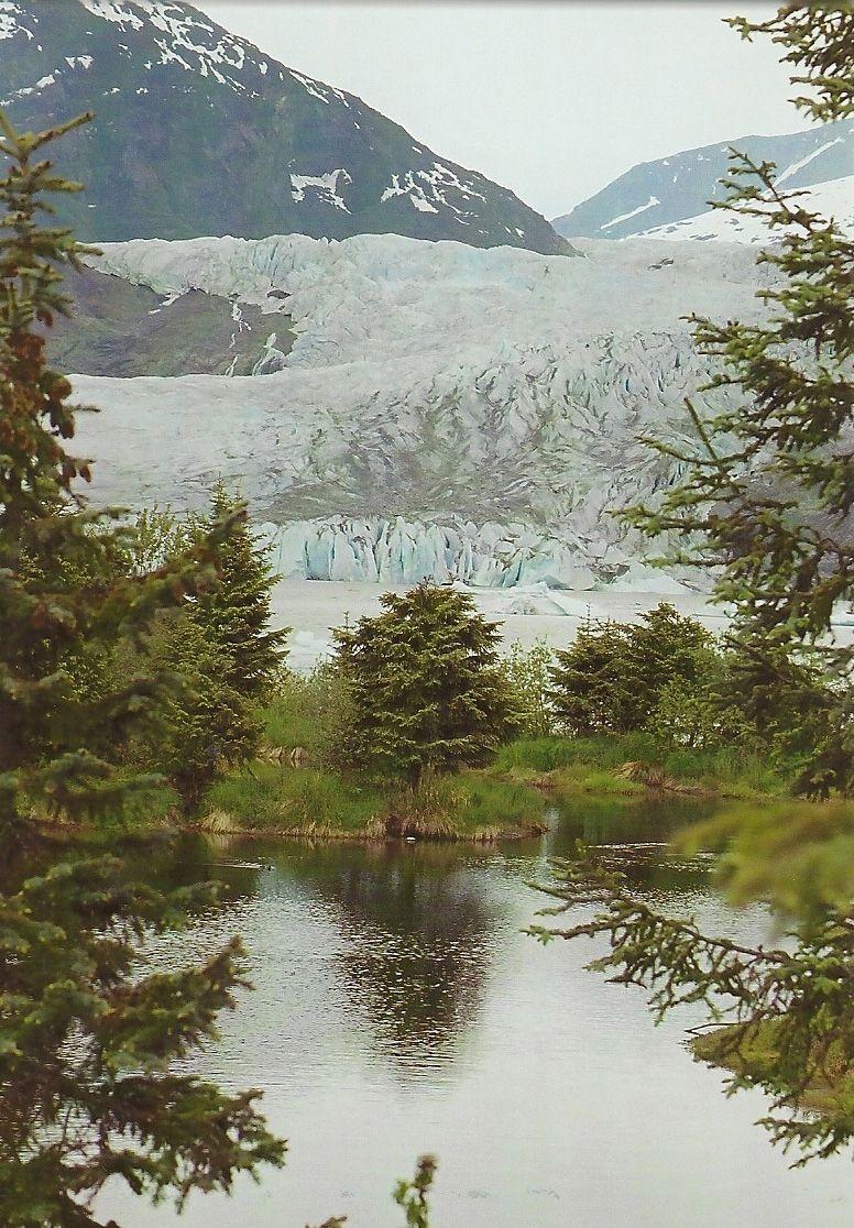 mendenhall national forest- Juneau, AK