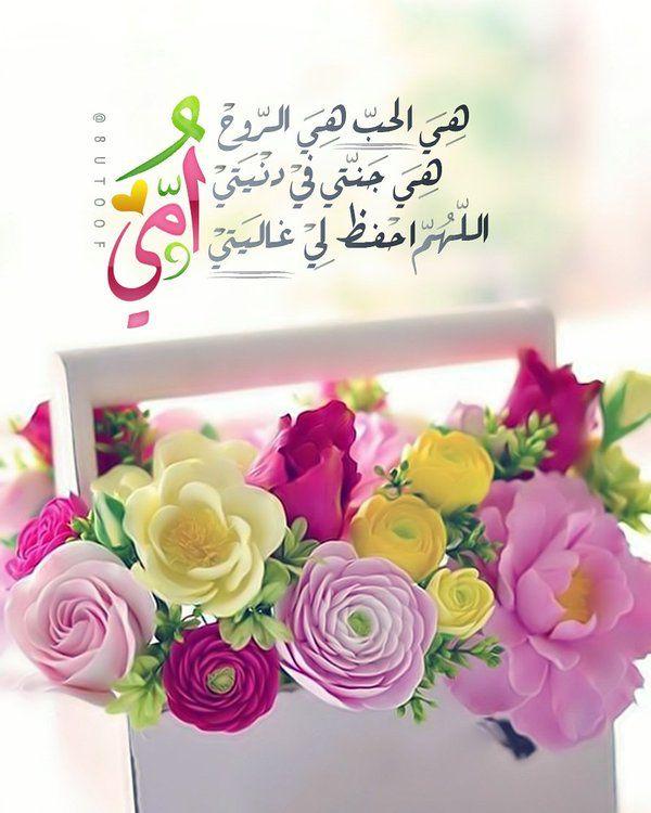 أمي هي الحب هي الروح هي جنني في دنيتي اللهم احفظ لي غاليتي Spring Flowers Flowers Flower Arrangements
